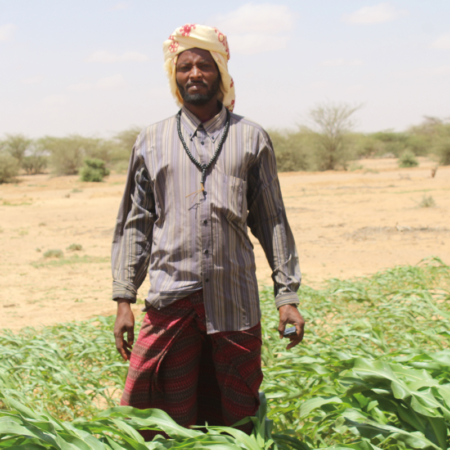 Fighting dry land is essential to sow and harvest
